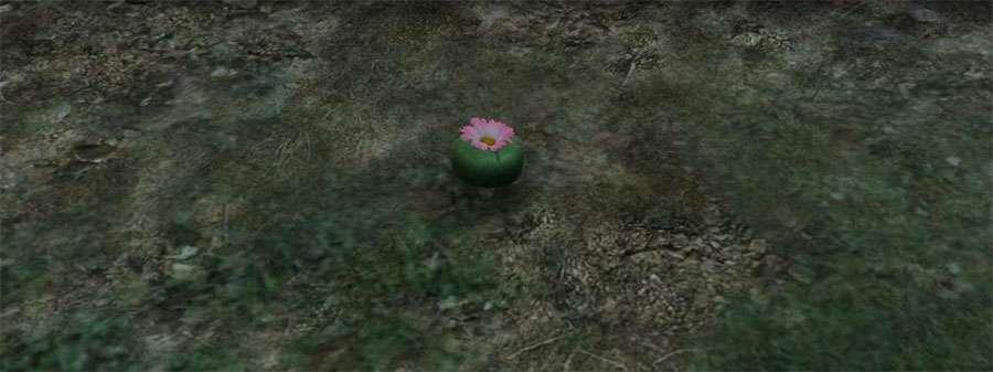 Растение для превращения в животное в GTA 5