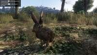 В GTA 5 можно превратиться в зайца!