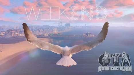 Видео от игроков в GTA 5: ТОП недели
