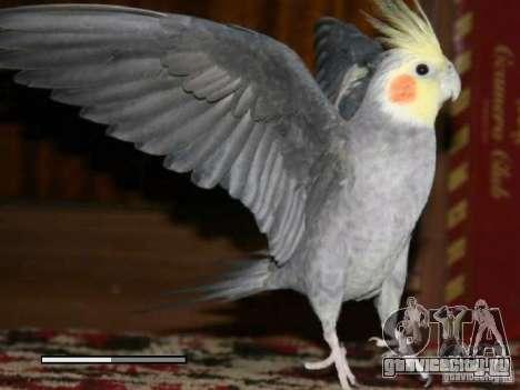 Загрузочный экран Попугаи Кореллы beta для GTA San Andreas шестой скриншот