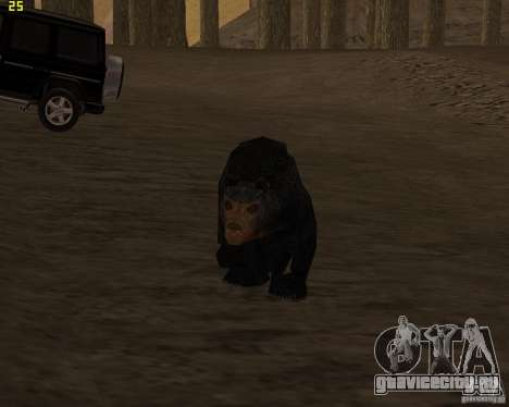Медведь для GTA San Andreas