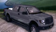 Ford F-150 ST Trim 2010