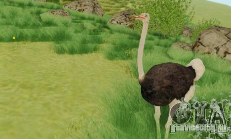 Ostrich From Goat Simulator для GTA San Andreas второй скриншот