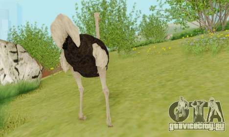 Ostrich From Goat Simulator для GTA San Andreas пятый скриншот
