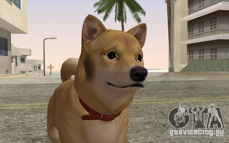 Собака для GTA San Andreas третий скриншот