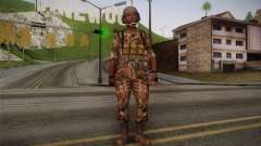 U.S. Soldier v3