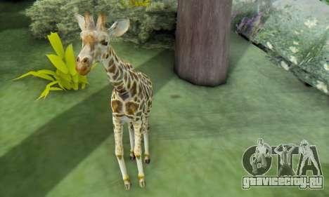 Giraffe (Mammal) для GTA San Andreas четвёртый скриншот