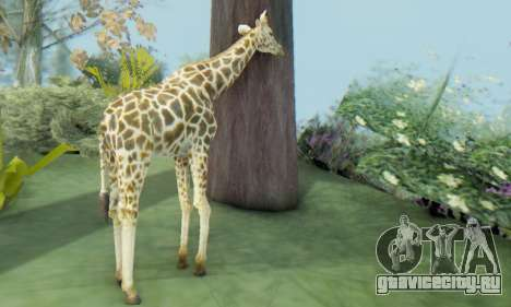 Giraffe (Mammal) для GTA San Andreas третий скриншот