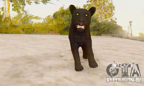 Black Panther (Mammal) для GTA San Andreas третий скриншот