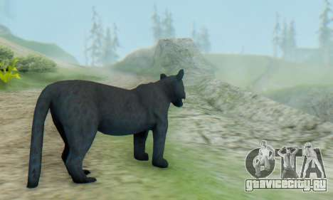 Black Panther (Mammal) для GTA San Andreas второй скриншот