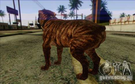 Rottweiler from GTA 5 Skin 1 для GTA San Andreas второй скриншот