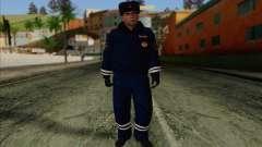 ДПС Скин 1