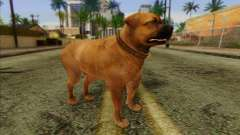 Rottweiler from GTA 5 Skin 2 для GTA San Andreas