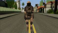Task Force 141 (CoD: MW 2) Skin 15