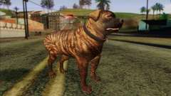 Rottweiler from GTA 5 Skin 1 для GTA San Andreas