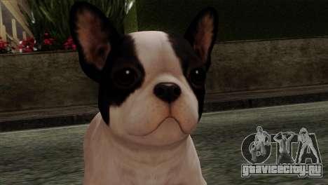 French Bulldog для GTA San Andreas третий скриншот