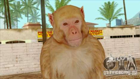 Monkey Skin from GTA 5 v2 для GTA San Andreas третий скриншот