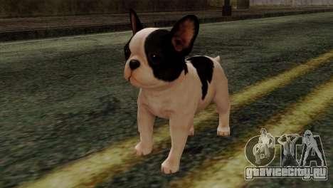 French Bulldog для GTA San Andreas