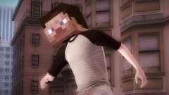 Minecraft Boy