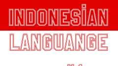Индонезийские Субтитры (В Игре Только)