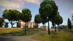 New House V2 для GTA San Andreas